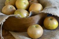 russette_apples