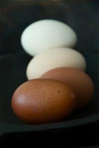 slow_cooked_eggs2