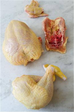 ChickenBroth2