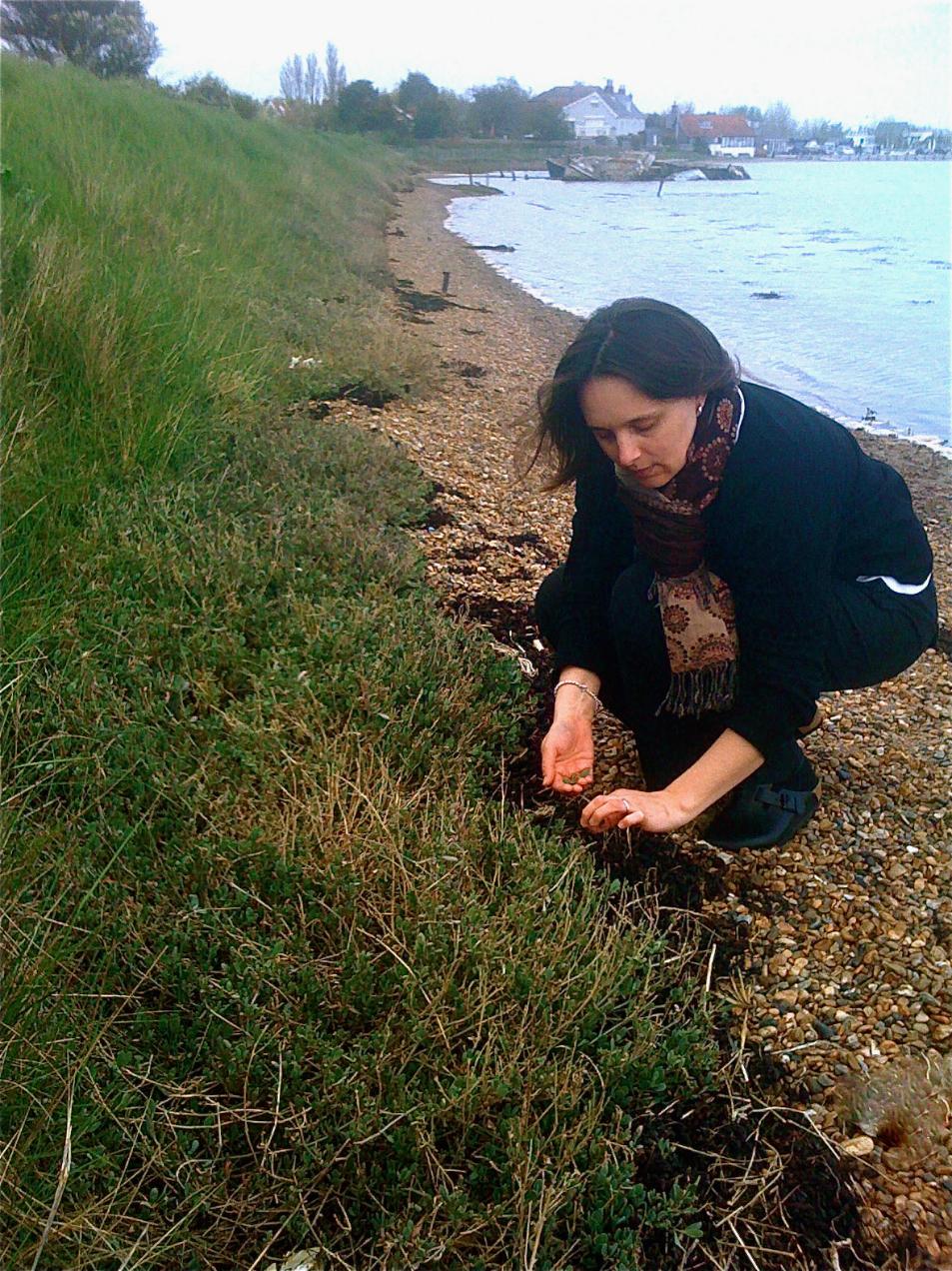 photo of Orford-landed Sea Bass with Crispy Potatoes, Bacon and Sea Purslane